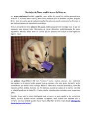 Ventajas de Tener un Petauros del Azucar.docx